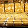 لازمه کاهش قیمت طلا از نگاه رئیس اتحادیه