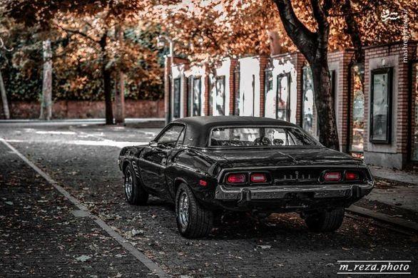 خودرو کمیاب در خیابان های تهران (عکس)