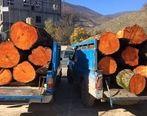 قاچاق چوب با پراید! (تصاویر)