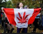 صف عجیب و غریب خرید مخدر ماری جوانا در کانادا + عکس